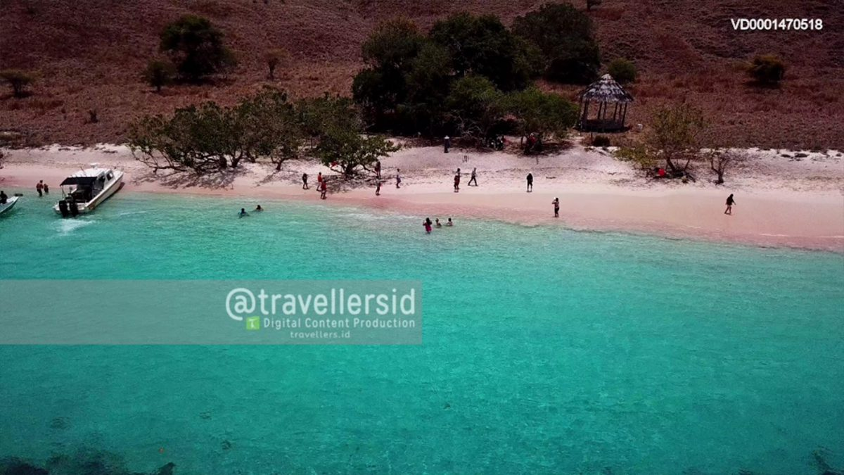Pink Beach of Komodo Island, Komodo National Park, West Manggarai, Flores, NTT, Indonesia