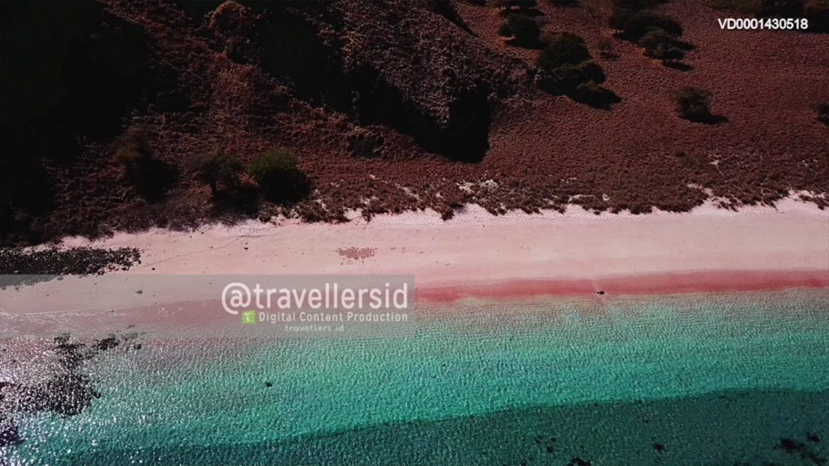 Pink Beach of Padar Island, Komodo National Park, West Manggarai, Flores, NTT, Indonesia